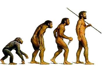 Фильм Деволюция человека опровержение теори Дарвина